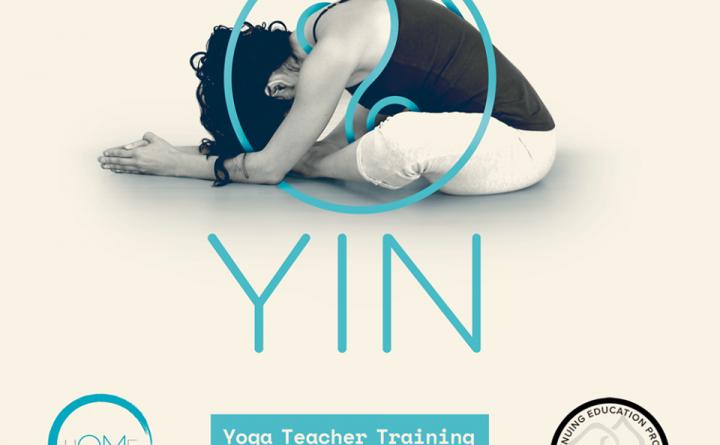 yin torino